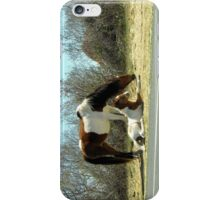 Born To Be Wild 3 iPhone Case/Skin
