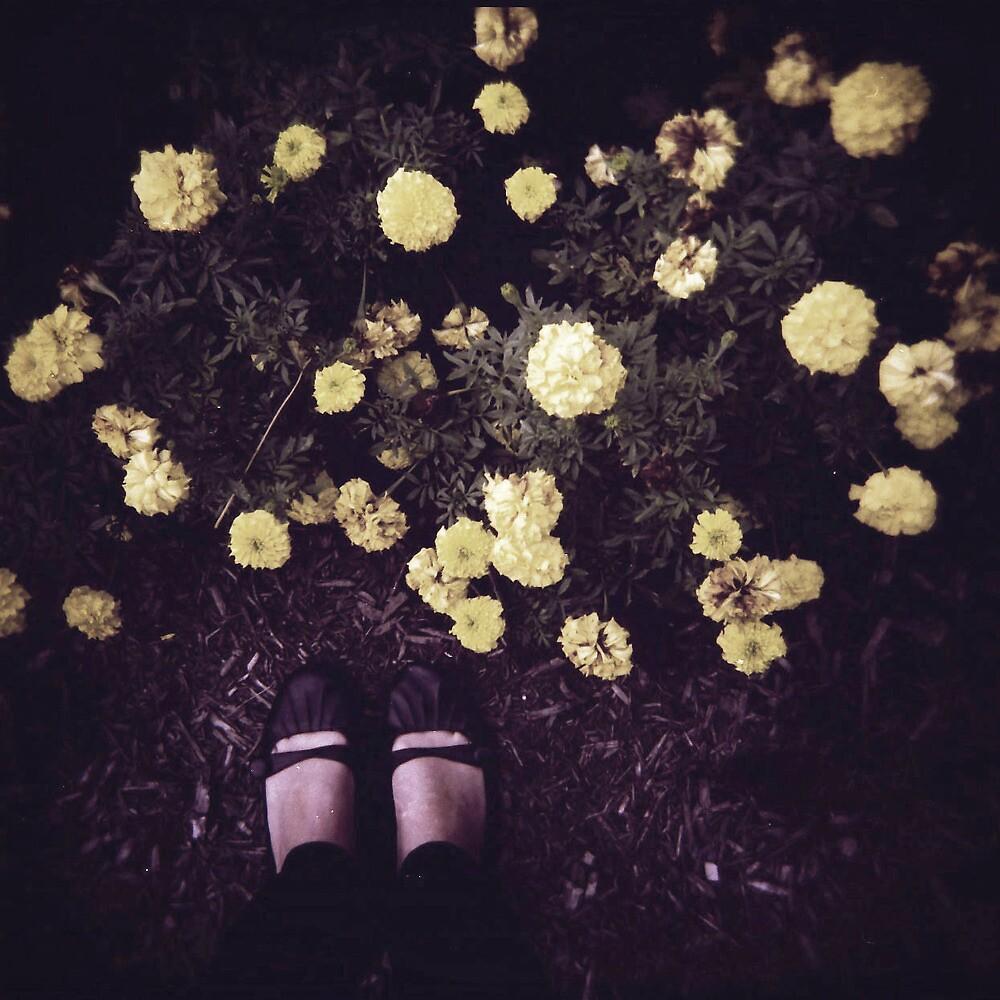 Untitled by shann55