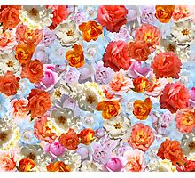 Mixed Roses Photographic Print