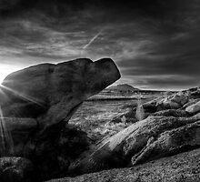 Lightscape by Bob Larson