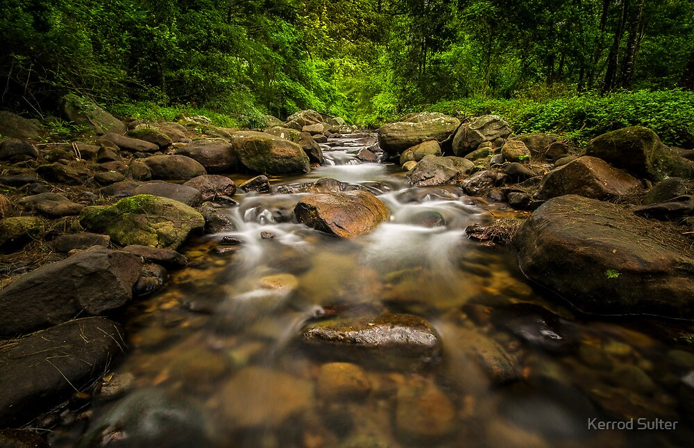 Macquarie Rivulet #2 by Kerrod Sulter