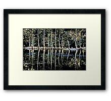 Nature`s Rib Cage Framed Print