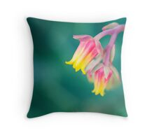 Rainbow Of Colours II Throw Pillow