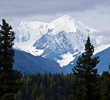 Denali Viewpoint North by Caren della Cioppa