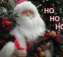 Ho Ho Ho Santa by alamarmie