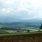 Swaledale, Yorkshire UK by GeorgeOne