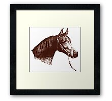 Red Frontier Arabian Horse Drawing 1985 Framed Print