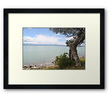 At the water's edge Framed Print
