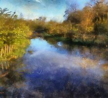 Flooded country Lane by Barry Thomas