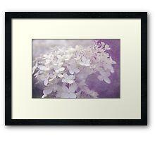Veiled Beauty in Purple Framed Print
