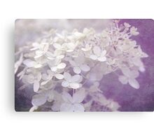 Veiled Beauty in Purple Canvas Print