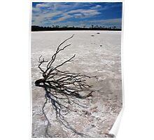 Salt Lake. Western Australia Poster