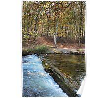 Autumn Overflow Poster