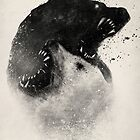 Polar Opposites  by Dan  Burgess