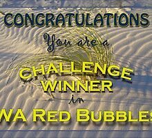WA Red Bubbles Challenge Winner 2 by pennyswork