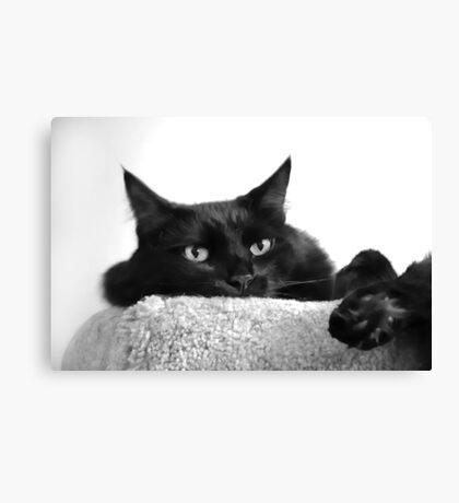 Pooh Bear in Black & White Canvas Print