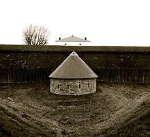 Fort Wellington by Jessica Bradford