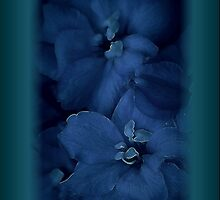 """""""Blue Angel's IPhone """" by Rosehaven"""