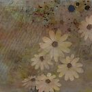 Daisies by colorpoetry