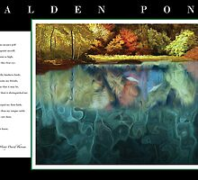 Tribute to Henry David Thoreau, Walden Pond with Poem by troutusa