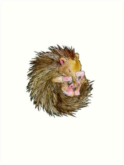 Sophie the Sleepy Hedgehog by Howard Hardiman