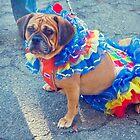 Clown Dog by MissMoll