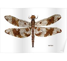 Female Filigree Skimmer Dragonfly Poster
