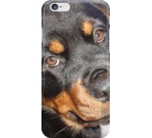 Female Rottweiler Puppy Making Eye Contact iPhone Case/Skin
