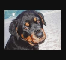 Female Rottweiler Puppy Making Eye Contact One Piece - Short Sleeve