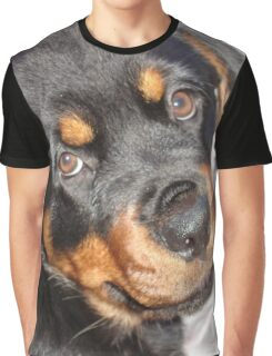 Female Rottweiler Puppy Making Eye Contact Graphic T-Shirt