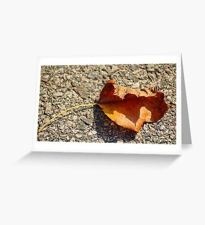 Fall Leaf Shadow Greeting Card