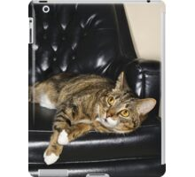 CAT ON A LEATHER CHAIR iPad Case/Skin