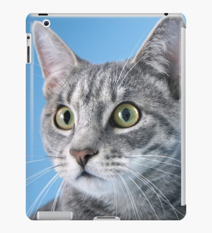 CAT WITH BLUE BACKGROUND iPad Case/Skin