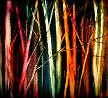 Pillars of Light.... by ©Janis Zroback