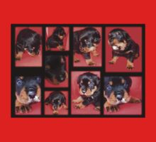 Cute Rottweiler Puppy Collage One Piece - Long Sleeve