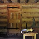 Wall of a Slave Cabin/Mount Vernon, VA by Bine