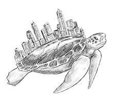 Urban Turtle by Orce