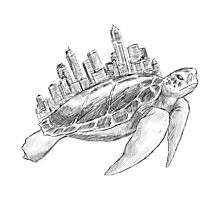 Urban Turtle Photographic Print