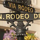 RODEO DRIVE, DAHLING! by monkeydesigns4u