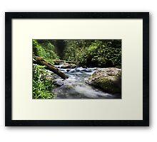 Flowing Vabuiagi River  Framed Print