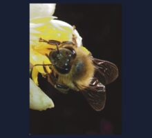 Honey Bee Pollinating Lemon Flower Close Up Kids Tee
