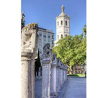Valladolid Sculptures Photographic Print