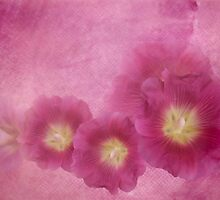 Misty Morning Hollyhocks by Diane Schuster