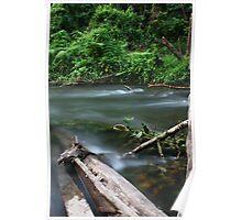 Vabuiagi River  Poster