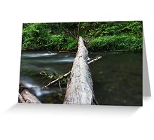 River Log Crossing Greeting Card