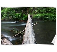 River Log Crossing Poster