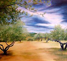 Olive trees by Jennib