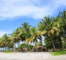 Buna Beach Palm Trees  by BenClarkImagery