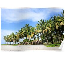 Buna Beach Palm Trees  Poster