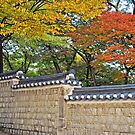 Over the Garden Wall - Changdeokgung Palace by TonyCrehan